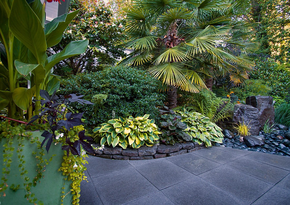 North vancouver landscape design on kilmer - Small backyard landscape designs ...