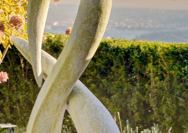 Backyard Sculpture